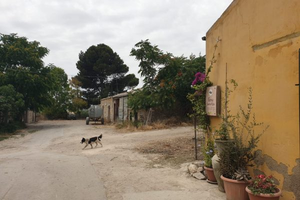 Forno Santa Rita e Maurizio Spinello
